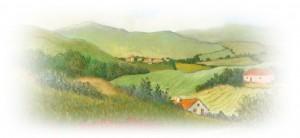 klaprozenschilderij vr Jeannine-crop